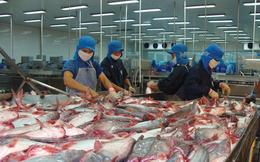 2018 tiếp tục khó khăn về nguyên liệu, Vĩnh Hoàn đặt chỉ tiêu lãi ròng tăng 2,5%