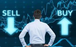 Cơ hội đầu tư nào trên thị trường chứng khoán nửa cuối năm 2018?