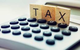 Chuyên gia đề xuất hình thức đánh thuế mới thay VAT để tránh doanh nghiệp lách luật