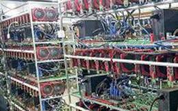 Vẫn ồ ạt nhập máy đào Bitcoin