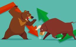 Dùng cổ phiếu trụ kéo thị trường, VNIndex đảo chiều tăng gần 10 điểm