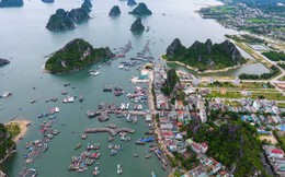 Quảng Ninh: Người dân và doanh nghiệp nói gì về dự Luật Đặc khu?