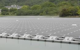 Thêm 9.100 tỷ đồng đầu tư dự án nhà máy điện mặt trời tại Tây Ninh
