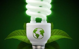 Cần thưởng phạt rõ ràng trong tiết kiệm năng lượng?