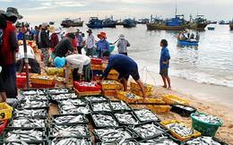 """EC sẽ xem xét lại vấn đề """"thẻ vàng"""" của Việt Nam"""