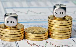 VCG, ITA, TPB, VJC, TMS, C21, CMX, TLT, TDN, BCP, PDN, SVC: Thông tin giao dịch lượng lớn cổ phiếu