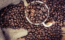 Thị trường cà phê khó khởi sắc trong tháng 6/2018