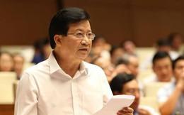 Phó Thủ tướng Trịnh Đình Dũng yêu cầu kiểm tra lại những dự án đầu tư ven biển