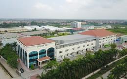 Everpia đạt tăng trưởng doanh thu 44% trong 5 tháng đầu năm, cổ phiếu tăng vọt