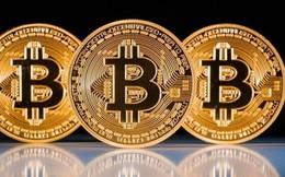 """Đề xuất dừng nhập máy đào Bitcoin, dân đào coin """"méo mặt"""""""