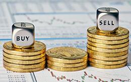 """Yurie Vietnam Securities """"xuống tiền"""" đầu tư thêm vào cổ phiếu VND, CTS và PVT"""