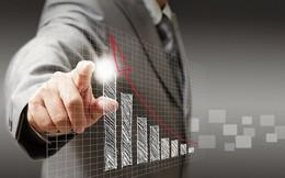HBC, NTL, LPB, CTS, TOP, VT8, CER: Thông tin giao dịch lượng lớn cổ phiếu