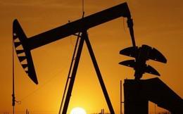 Thị trường hàng hóa ngày 11/7: Giá dầu và nhựa tăng trong khi kim loại và nông sản giảm sâu