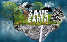 [How they do] Hỡi người trẻ, đây là cách đơn giản giúp bạn cứu trái đất dù chỉ ngồi một chỗ lướt web: Bỏ Google đi!
