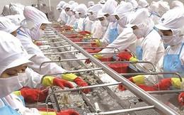 Tháo gỡ được room ngoại lên 100%, Thủy sản Minh Phú (MPC) tăng vốn trước thềm trở lại HoSE