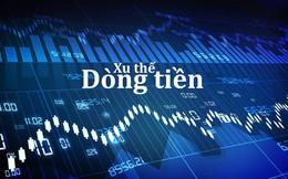 Xu thế dòng tiền: Thị trường cơ sở sẽ hút tiền trở lại khi có cơ hội