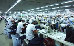 Đầu tư và Phát triển TDT: Lợi nhuận 6 tháng tăng 19,5%, chuẩn bị chào sàn HNX với giá 15.000 đồng/cp
