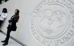 IMF cảnh báo Mỹ dễ bị tổn thương nhất trong cuộc chiến thương mại đang leo thang
