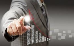 TDG, FTM, AMV, VLC, PXL: Thông tin giao dịch lượng lớn cổ phiếu