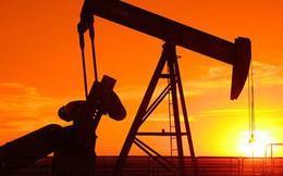 Giá dầu giảm do Nhà Trắng cho biết Saudi sẽ tăng sản lượng khi cần thiết