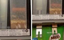 """Đăng nhầm thông báo """"kiểm điểm nhân viên để máy bán sữa có giòi"""" lên fanpage chính thức thay vì group kín, quản lý Lotte Cinema lên tiếng"""