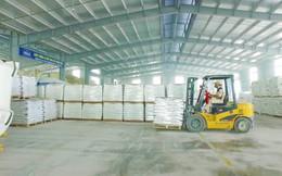 Dây chuyền Filler Masterbatch chạy hết công suất, LNST 6 tháng đầu năm của Nhựa Pha Lê (PLP) tăng trưởng 25% lên 31 tỷ đồng