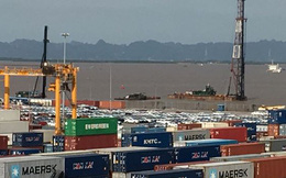 Ôtô miễn thuế 'đổ bộ' về Việt Nam, tập kết kín cảng chờ lăn bánh