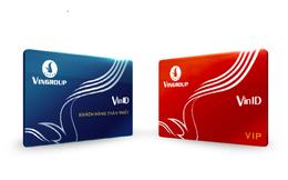 Vingroup rót 2.400 tỷ đồng thành lập công ty VINID