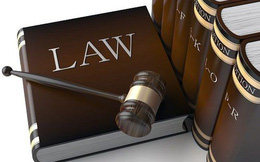 Giao dịch cổ phiếu HCD, 3 lãnh đạo công ty vừa bị UBCKNN xử phạt hành chính