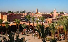 Bộ Công Thương khuyến cáo các doanh nghiệp xuất khẩu không giao dịch với công ty tại Maroc