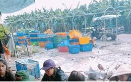 Ảnh: Người Việt thẫn thờ dọn dẹp đổ nát sau vụ vỡ đập thủy điện ở Lào