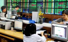 21 CTCK lãi hơn 3.500 tỷ đồng sau 6 tháng, tăng trưởng 39%