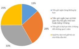 Tập đoàn Dầu khí Việt Nam gửi bao nhiêu tiền trong ngân hàng?