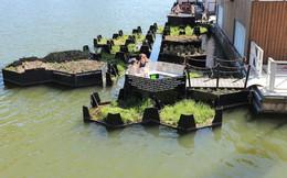 Công viên nổi độc đáo được làm từ rác thải nhựa ở Hà Lan: Địa điểm tuyệt vời để tụ tập bạn bè và thư giãn