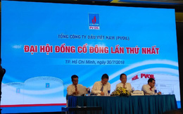 ĐHĐCĐ PV Oil: Vietjet ứng cử người vào HĐQT, niêm yết sớm nhất 2019