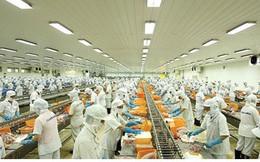 Xuất khẩu gạo và rau quả đối mặt nhiều khó khăn những tháng cuối năm