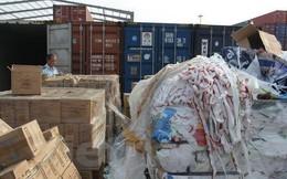 Hàng triệu tấn phế liệu đổ vào Việt Nam: Ngành hải quan than vướng