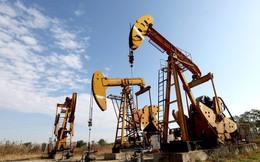 Nguy cơ thiếu hụt nguồn cung, dầu thô tăng giá