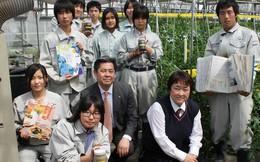 Việt Nam đứng đầu số lượng thực tập sinh tại Nhật Bản