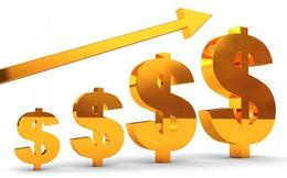 CTD, VNM, DIG, NTL, API, VGC, DBT, GKM: Thông tin giao dịch lượng lớn cổ phiếu