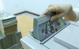 VDSC: Chênh lệch giữa lãi suất VND và USD trên liên ngân hàng có thể áp lực lên tỷ giá