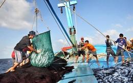 Việt Nam gia nhập Hiệp định PSMA