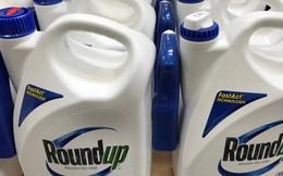 Không cảnh báo ung thư, Monsanto bị buộc bồi thường 289 triệu USD