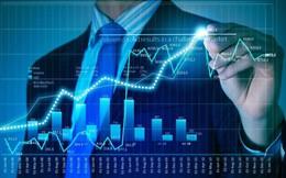 NLG, VNM, CII, SJF, CVC, XHC, SDU, MHL, HTC, BSC: Thông tin giao dịch lượng lớn cổ phiếu