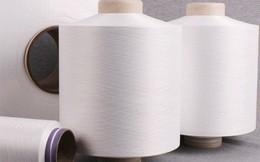 Ấn Độ áp thuế chống bán phá 5 năm đối với sợi Nylon Filament Yarn Việt Nam