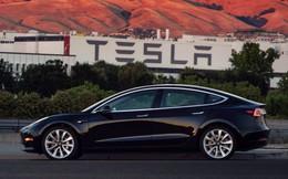 Elon Musk hứng khởi về tương lai của Tesla, cổ phiếu ngay lập tức tăng vọt 11%