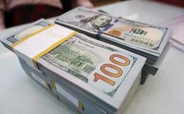 Tỷ giá trung tâm giảm nhẹ, USD ngân hàng cùng hạ nhiệt