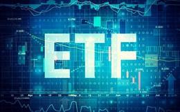 VNM ETF và FTSE Vietnam ETF sẽ mua, bán ra sao trong kỳ review quý 3?
