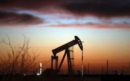 Giá dầu tăng 3 phiên liên tiếp