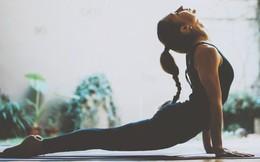 Chỉ cần tập 4 động tác yoga cơ bản này cũng đủ có cơ bụng săn chắc, đánh bay mỡ toàn thân